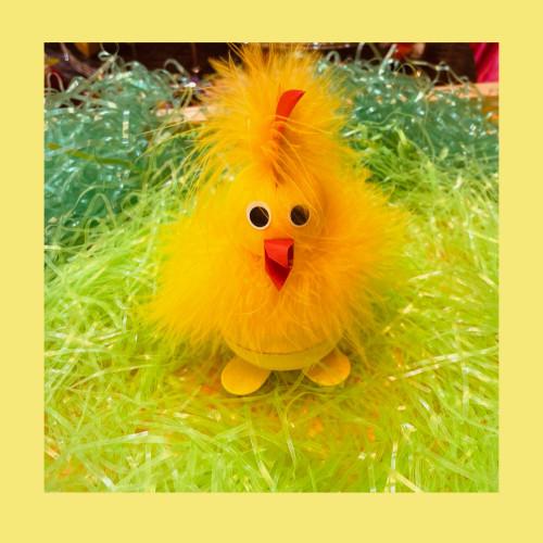 Chick 2 pc box