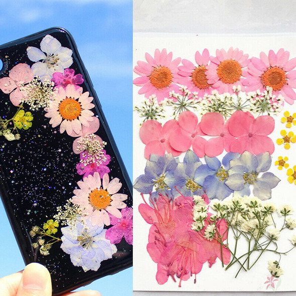 Real Dried Flower Material Dyeing Flower For Craft Phone Case DIY Accessori&+