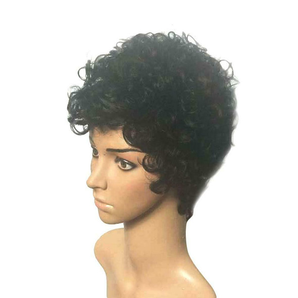 Black Short Curly Wigs Natural Synthetic Hair Wigs for Man Women