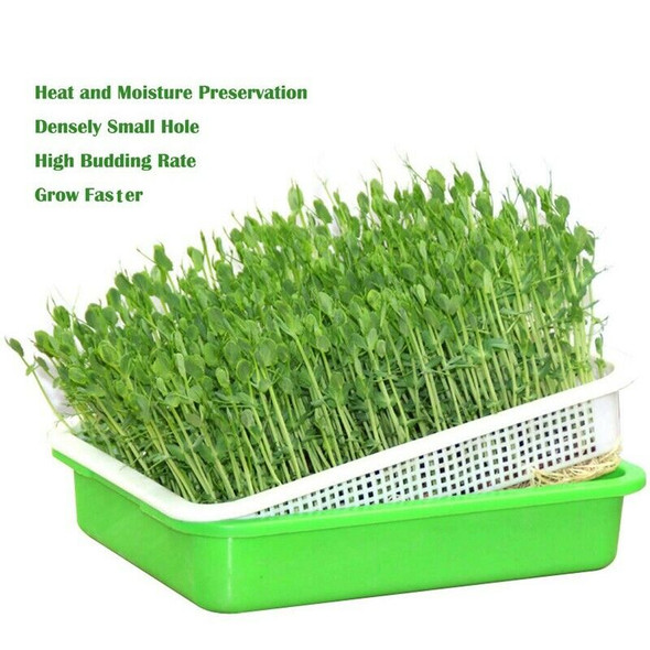 Seed Sprouter Tray PP Healthy Alfalfa Wheatgrass Seeds Grower with Cover,2 SA4I7