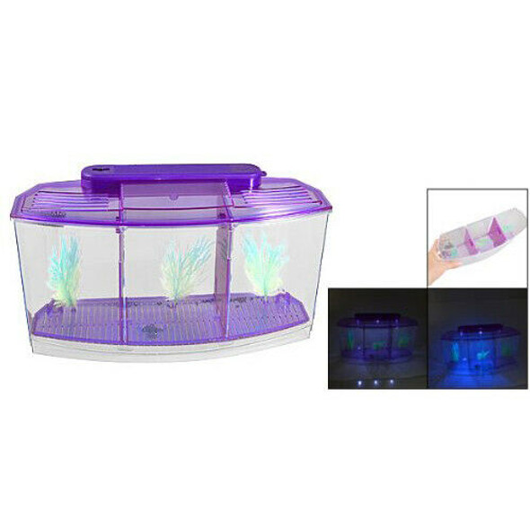 transparent, purple Plastic Battery Powered LED Lamp Mini Desktop Fish Aqua H2B6
