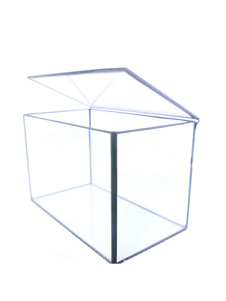1 * Rectangle Geometric Clear Glass Box Tabletop Succulent Plant Planter Useful