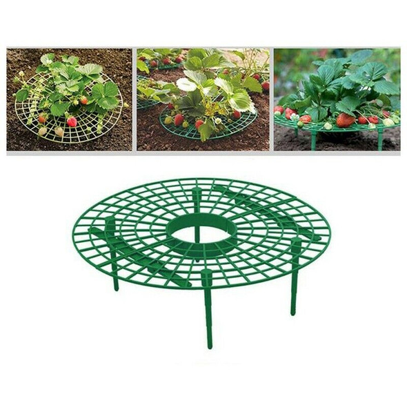 10Pcs Plant Plastic Tool Strawberry Growing Circle Support Rack Farming Fra A2A3