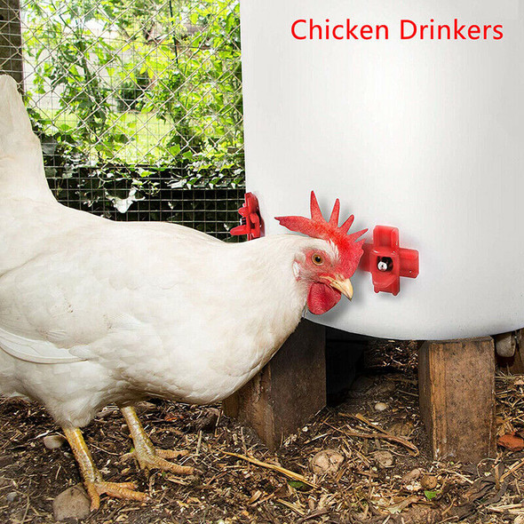 Horizontal Side Poultry Waterer Automatic Nipples Drinker Waterer For ChickS Gw