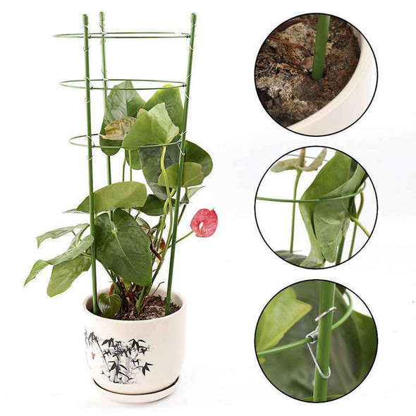 Climbing Plants Support, Garden Trellis Flowers Tomato Cages Stand Set Of 3