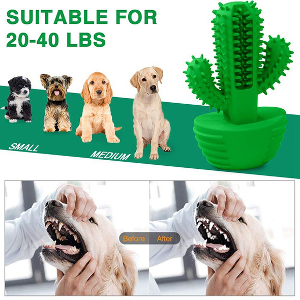 Dog Teeth Cleaning Toys Natural Rubber Dog Toothbrush Stick Effective Dog T