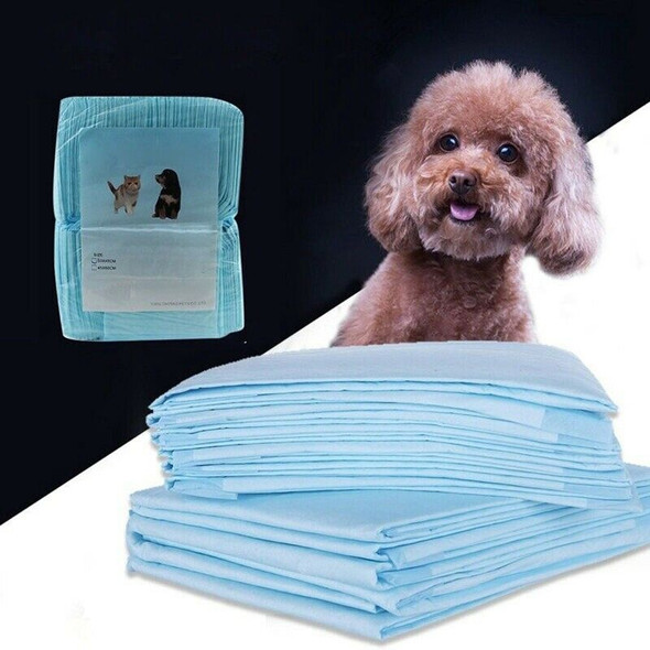 20PCS Multi - Size Pet Diaper Pet Dog Super Absorbent Urine Training Pad De