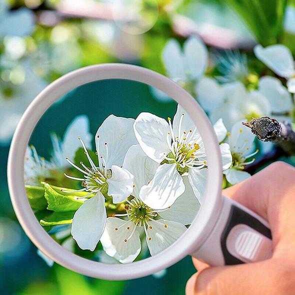 20 Times Magnifying Glass With Led Light Reading Handheld Magnifying Glass
