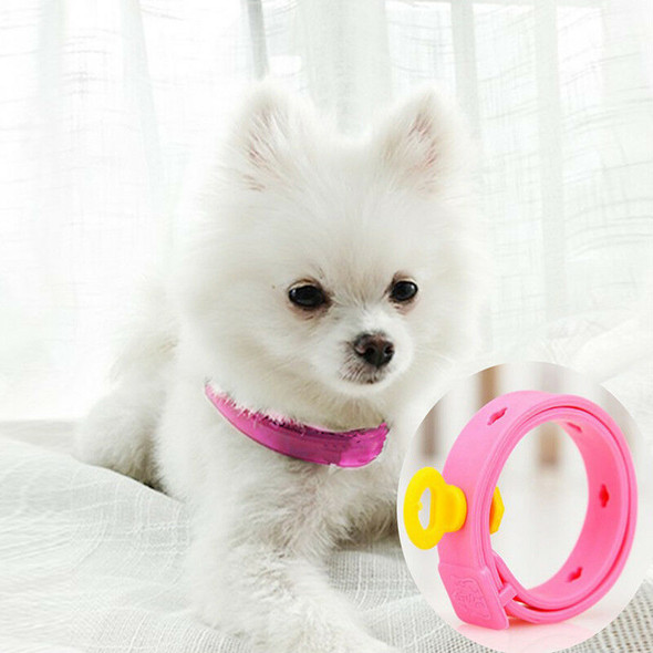 1Pc Dog Kitten Adjustable Pet Collar Neck Strap Remedy Anti Flea MiteAcariTickHJ