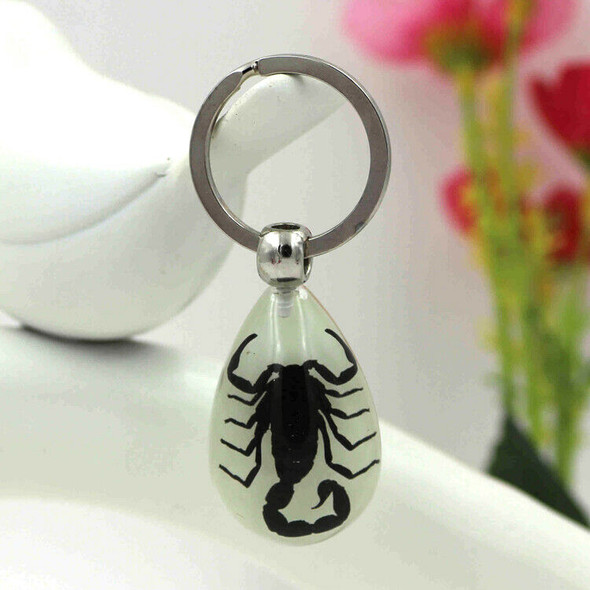 Glow-In-The-Dark Real Insect Keychain (Black Scorpion) G9T7