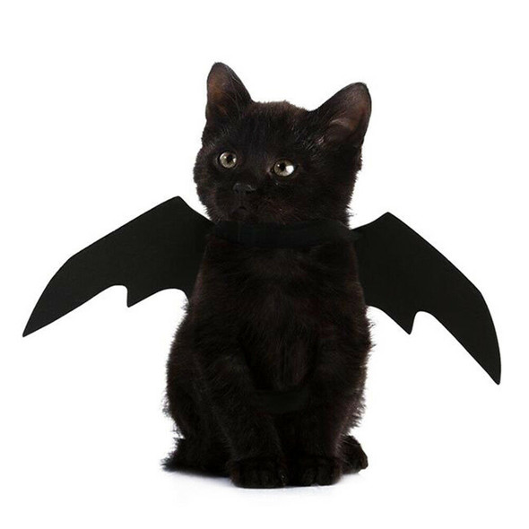 Lovely for small pet dog cat bat wings halloween wings halloween costumeXP