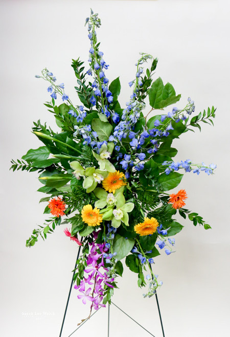a mix of vibrant gerbera daisies, iris, delphinium and orchids arranged in a tropical easel designed locally by Earle's loveland