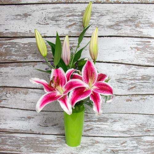 Simple Stargazer Lily