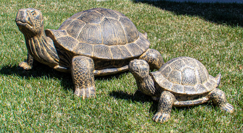 Add intrigue to your garden with one of these turtles!