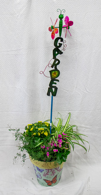 Get this beautiful medium sized Studio M Art Pot filled with fun plants and this fun wind spinner garden stake that you can keep in the pot or put out in your yard! Let us choose a fun pot for you and dress it up with the perfect seasonal plants!