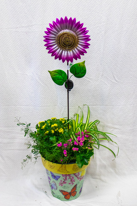 Get this beautiful medium sized Studio M Art Pot filled with fun plants and this beautiful solar powered sunflower stake! Let us choose a fun pot for you and dress it up with the perfect seasonal plants!