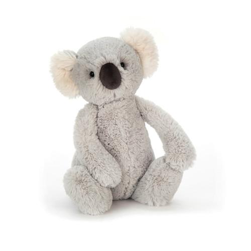 Bashful Koala