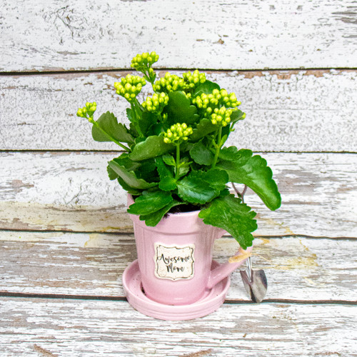 Awesome Mom Flower Pot Mug with Kalanchoe