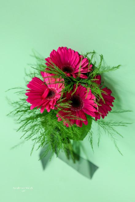 Hot Pink Gerbera Bridesmaid Bouquet