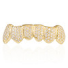 14K Yellow Gold Fully Iced 3CT Diamond Bottom 6 Grill