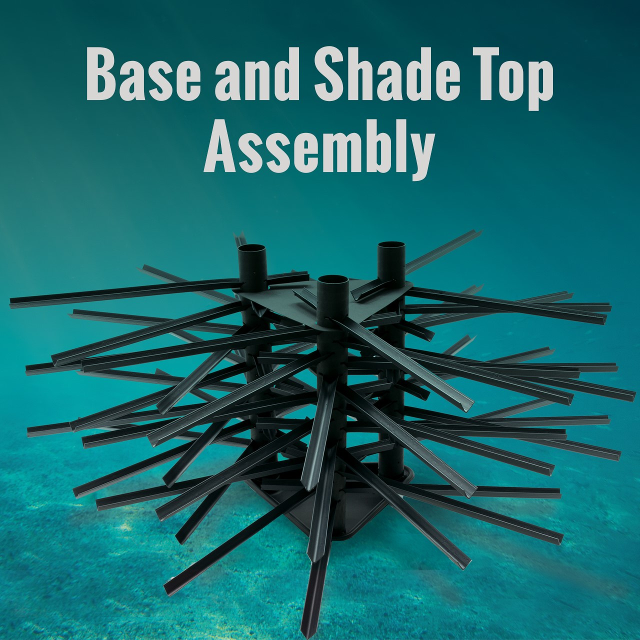 Base and Shade Top Assembly