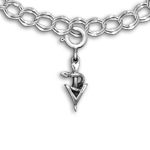 Sterling Silver Small Veterinary Caduceus Charm