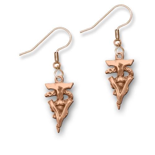 Bronze Veterinary Technician Caduceus Earrings