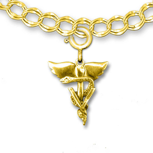 14K Solid Gold Winged Veterinary Caduceus Charm