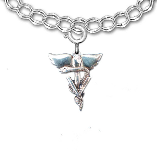 Sterling Silver Winged Veterinary Caduceus Charm