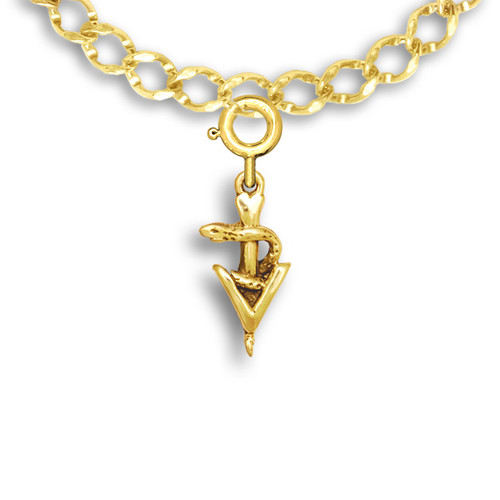 14k Solid Gold Small Veterinary Caduceus Charm
