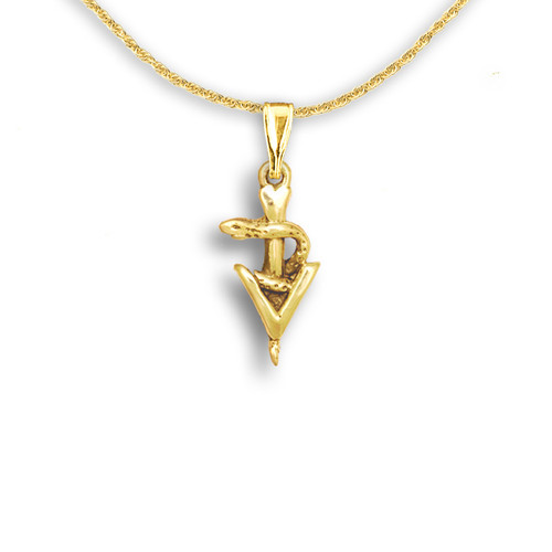 14k Solid Gold Small Veterinary Caduceus Pendant
