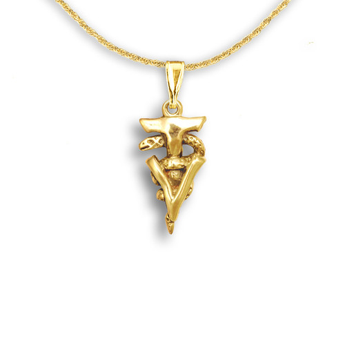 14k Solid Gold Veterinary Technician Caduceus Pendant