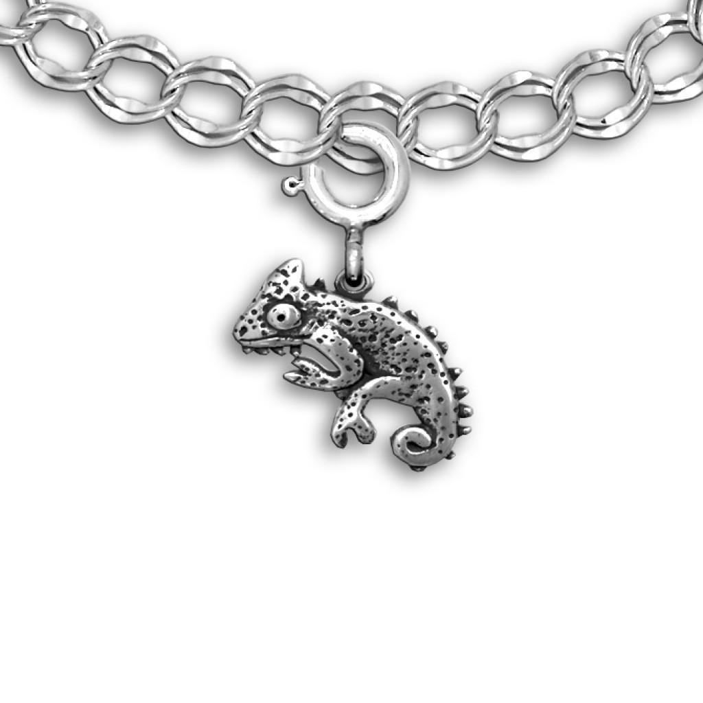 Chameleon Jewelry