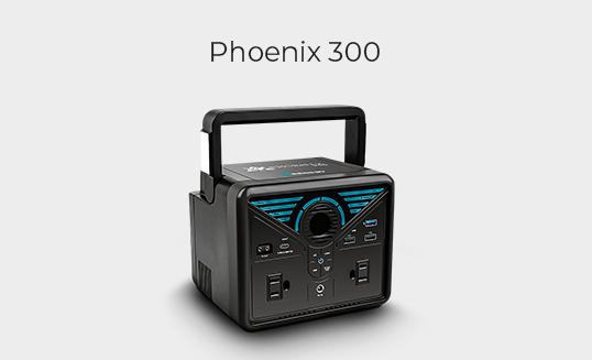 Phoenix 300