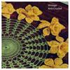 Crochet Wheel Doily, Daffodil Border Pattern