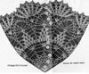 Large Pineapple Doily Crochet pattern stitch illustration, design 641