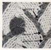 Knitted Rosebud Detail