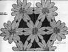 Flower Medallions Joined Crochet llustration