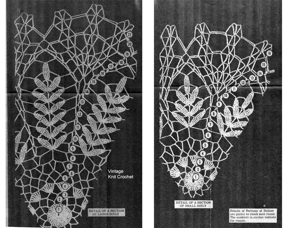 Crochet Pattern Illustration, Fern Doilies Pattern Design 7488