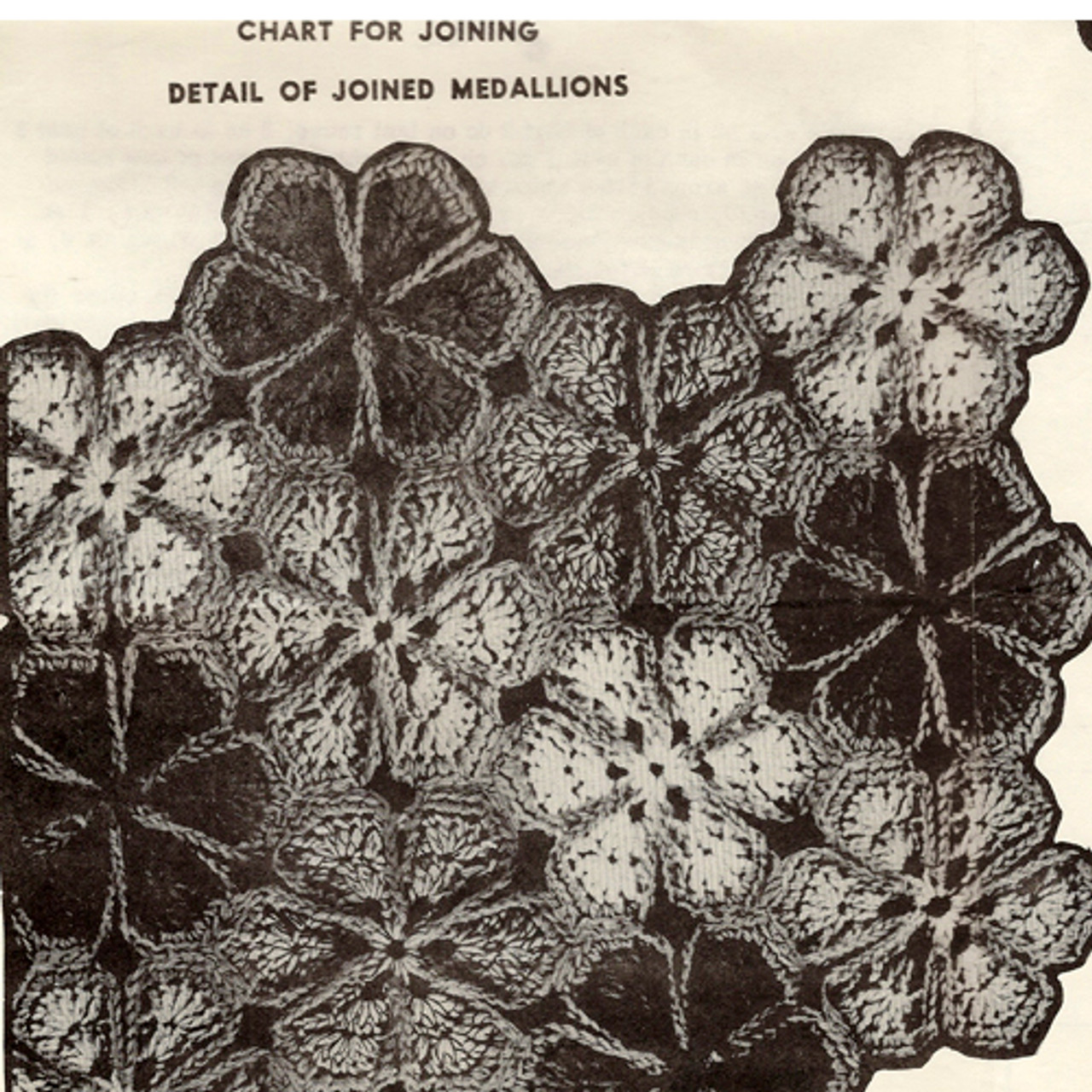 Illustration of joined crochet daisy medallions