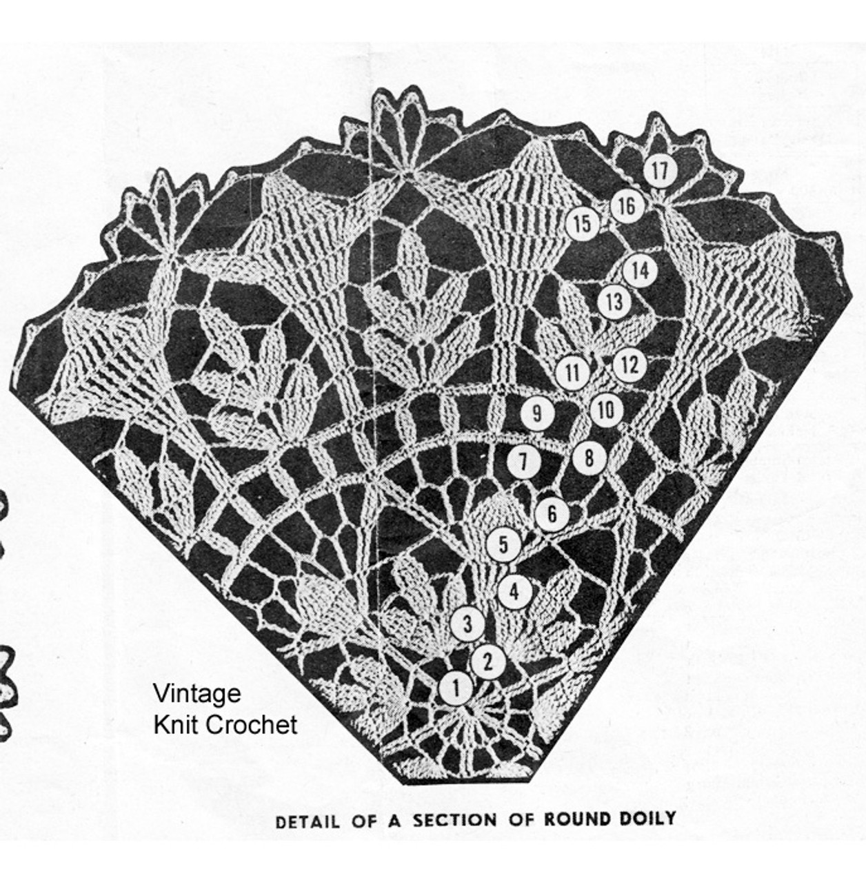 Round Fern Doily Pattern Illustration, Design 793