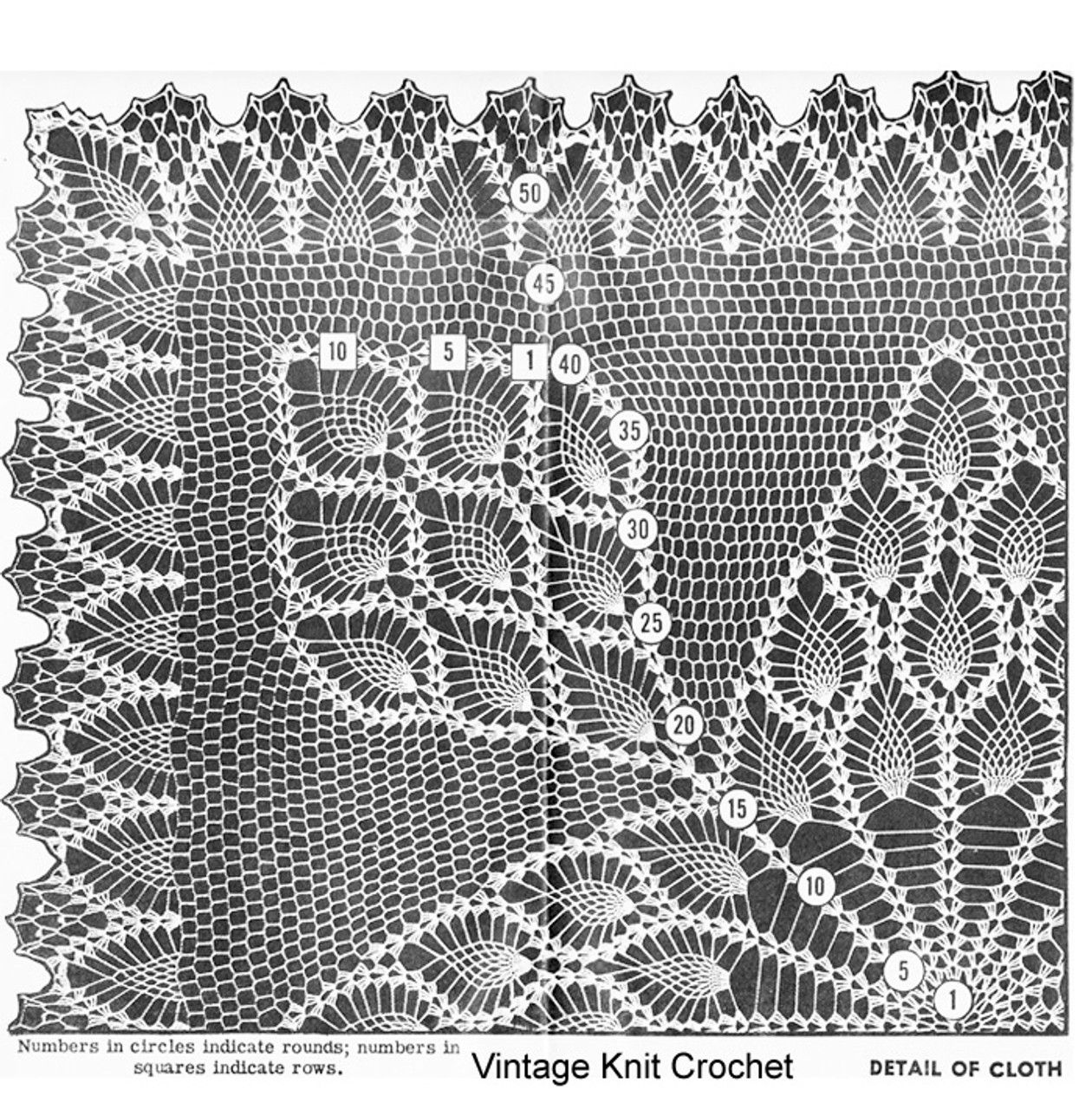 Pineapple crochet cloth illustration, Laura Wheeler 832