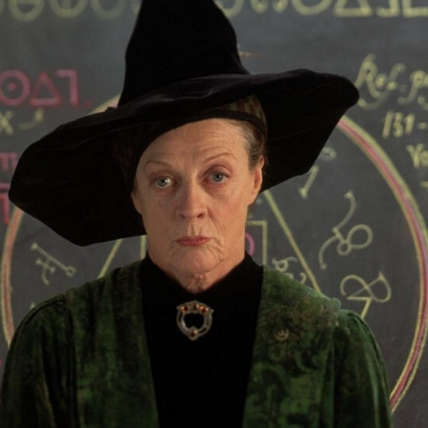 Potter Pros: Harry Potter Questions