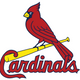 Birds!: St. Louis Cardinals Trivia
