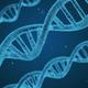 Bio 101 Biology Trivia