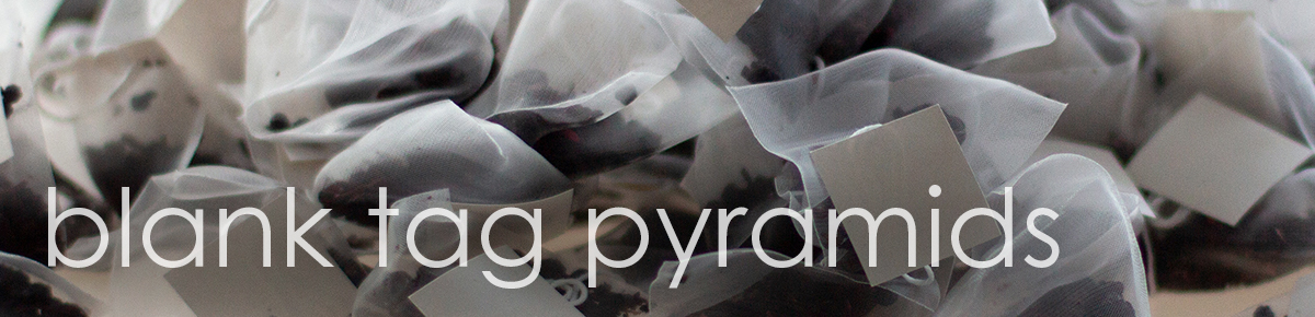 Delicious Berry Blank Tag Pyramid Teabags