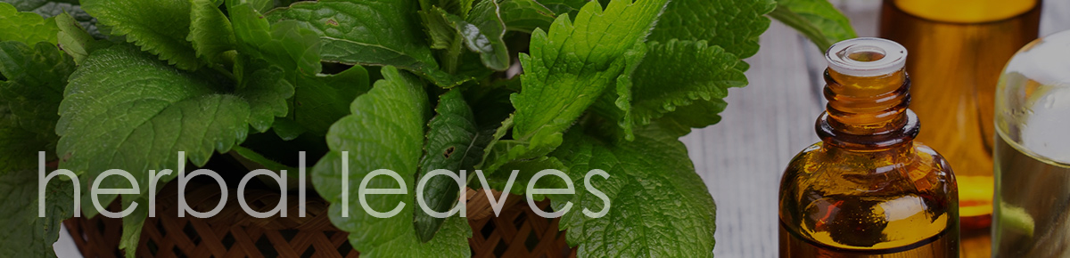 Herbal Leaves from Jenier World of Teas