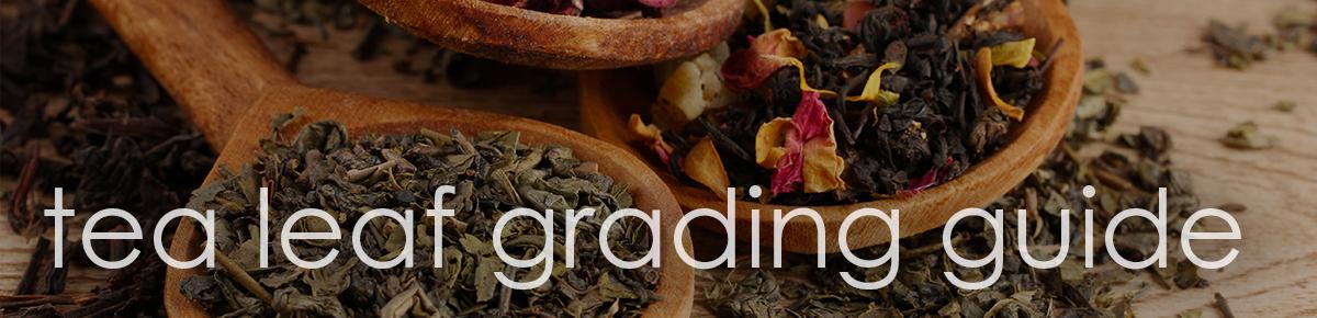 leafgrading2cg.jpg
