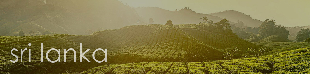 Jenier Teas from Sri Lanka