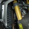 BDCW - Radiator Guard (Honda Africa Twin)